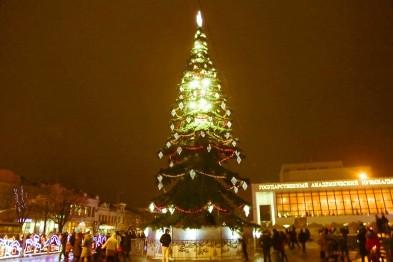Новогодние ёлки в городах Украины 600