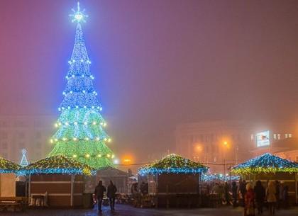 Новогодние ёлки в городах Украины 654