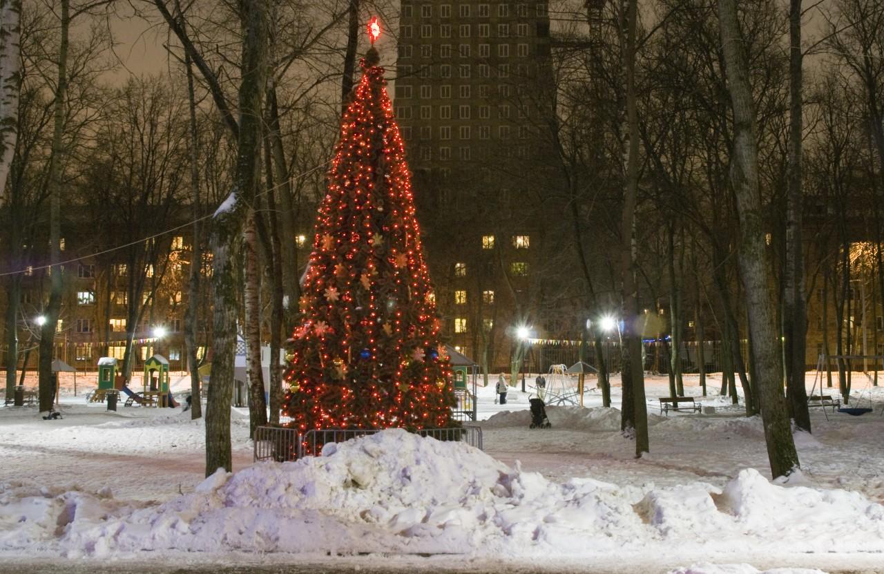 елка в москве фото