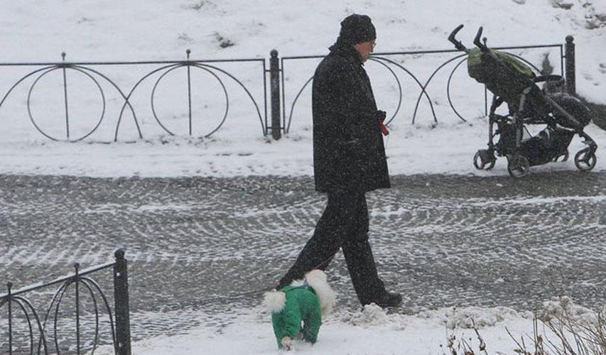 У києві випав перший сніг фото 19