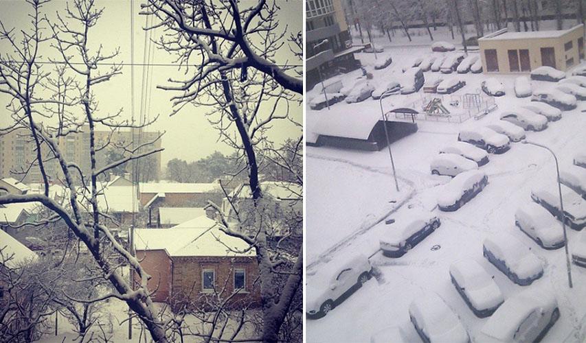У києві випав перший сніг фото 21