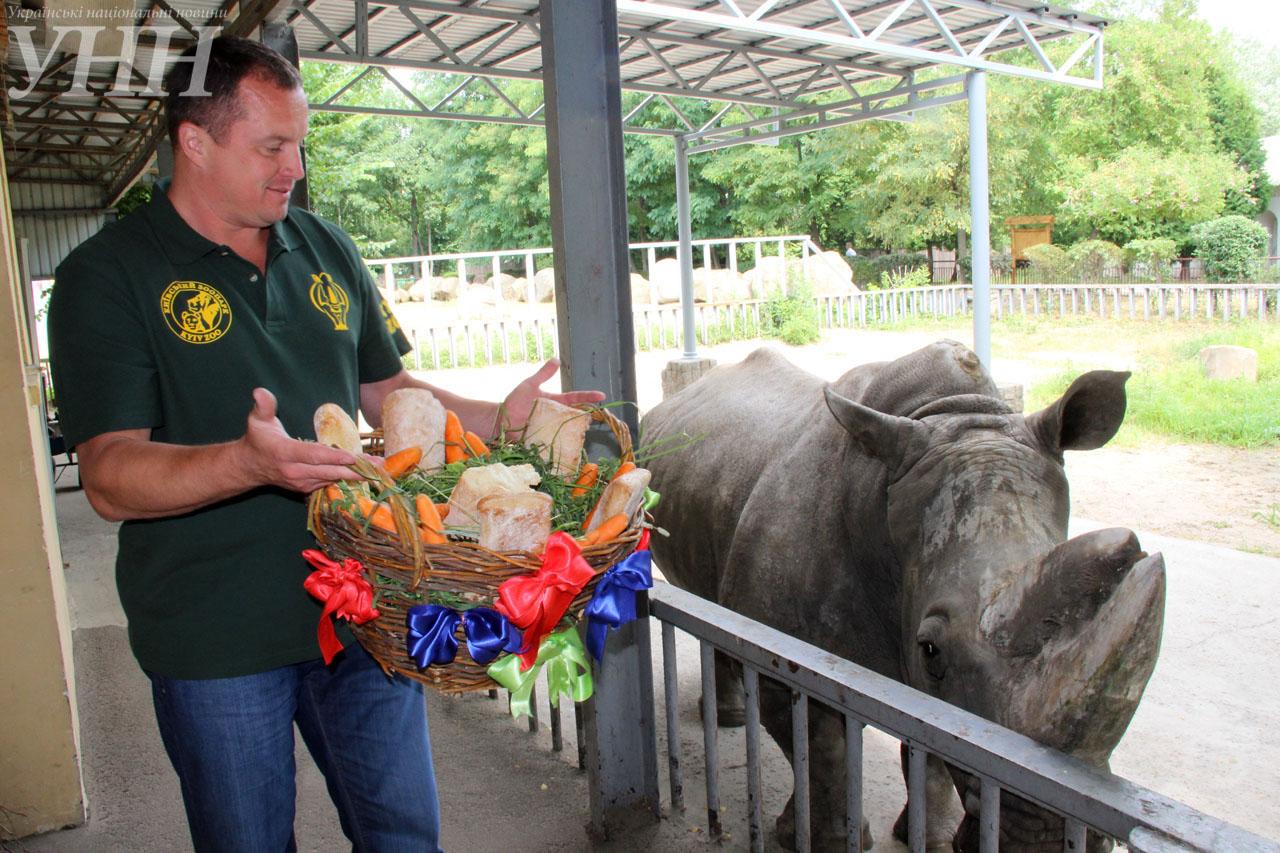 У Київському зоопарку привітали носорога-довгожителя із днем народження - фото 1