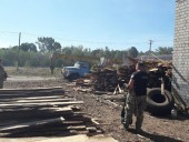 Незаконну пилораму викрили на Житомирщині - фото 3