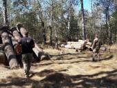 Незаконну пилораму викрили на Житомирщині - фото 9