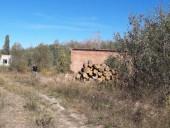 Незаконну пилораму викрили на Житомирщині - фото 7