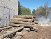 Незаконну пилораму викрили на Житомирщині - фото 5