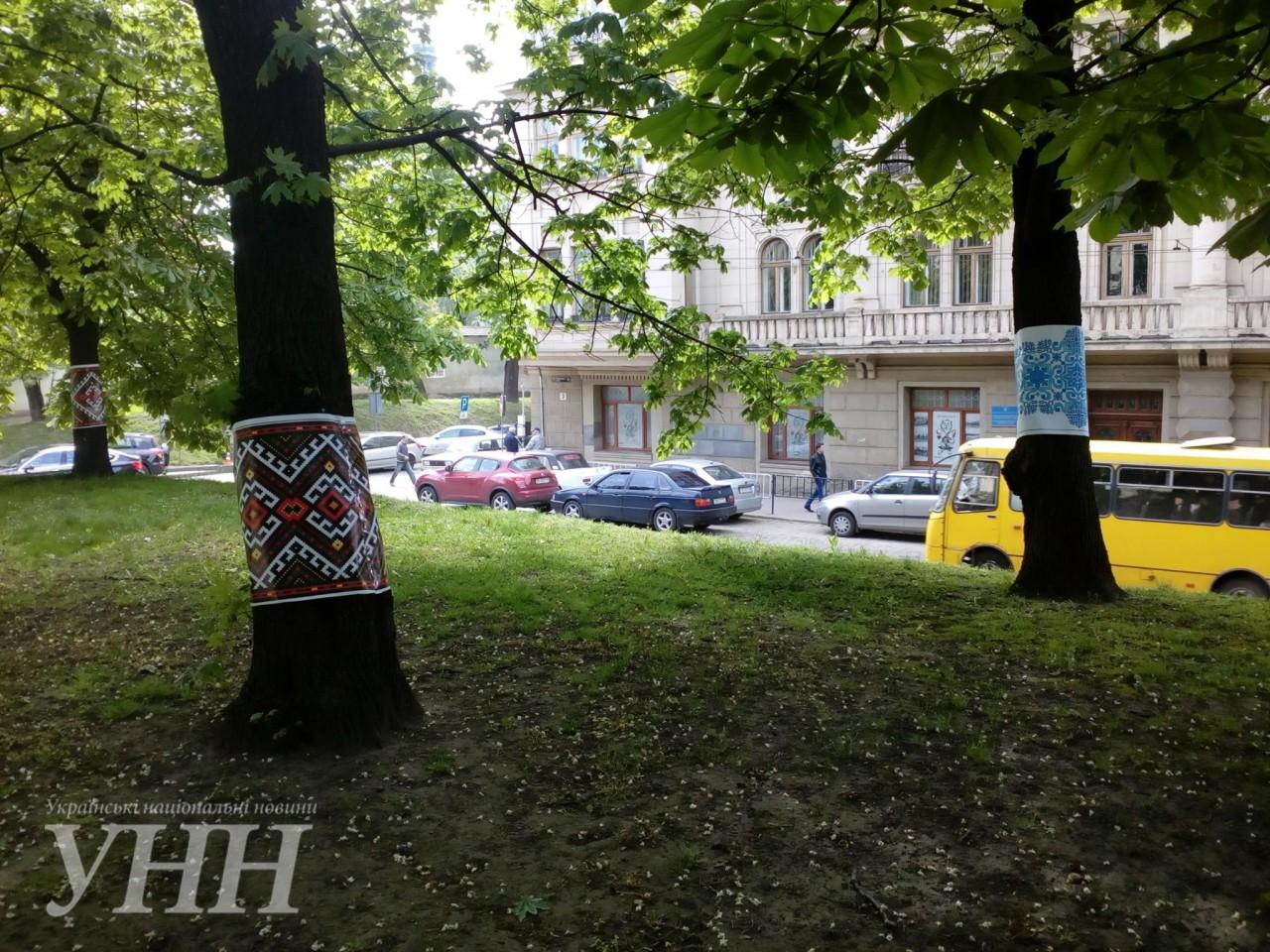 Дерева одягли у вишиванки у Львові – новини на УНН  bf04a1523e330