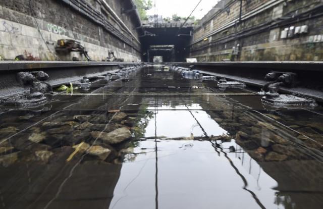 Паризька Сена вийшла зберегів і затопила місто