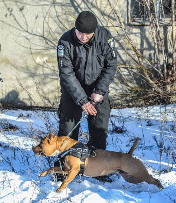 Стрілянина, барикади і штурм: поліцейські провели масштабні навчання на Житомирщині - фото 7