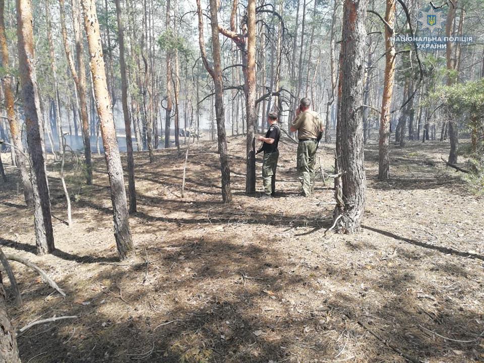 Під Сєвєродонецьком горить близько 5 гектарів лісу,— ДСНС