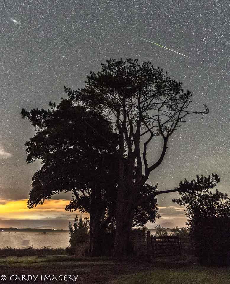 Звездопад Персеиды показали фотографы со всего мира - фото 7