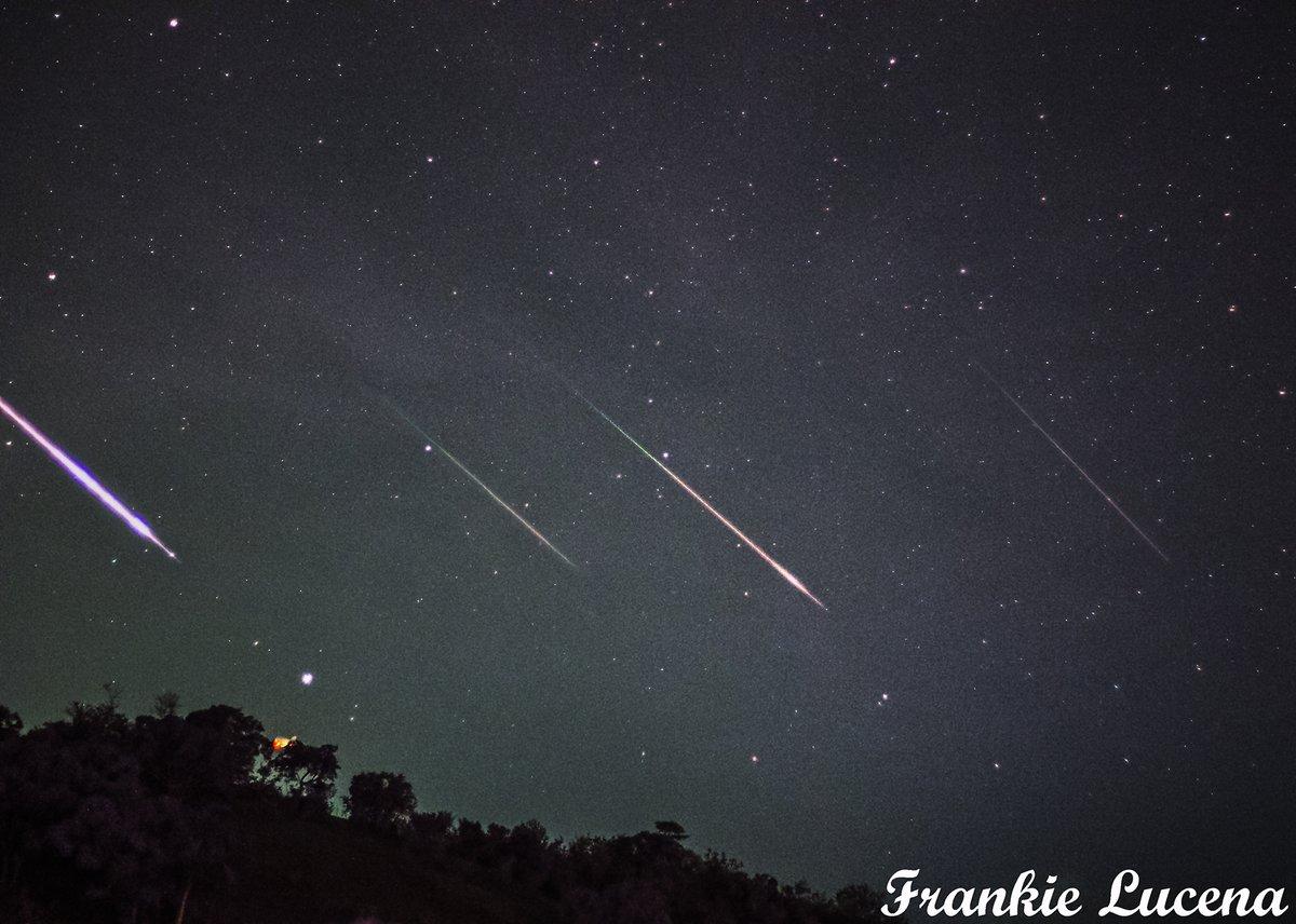 Звездопад Персеиды показали фотографы со всего мира - фото 5