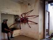 Португальский уличный художник удивляет мир 3D-граффити - фото 19