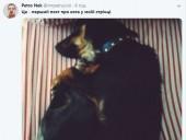 Пост Порошенка про котиків запустив флешмоб у соцмережах - фото 4
