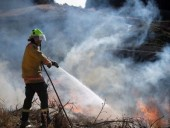 Пожары в Новой Зеландии не утихают - фото 10