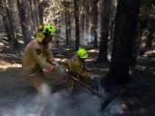 Пожары в Новой Зеландии не утихают - фото 8