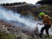 Пожары в Новой Зеландии не утихают - фото 3