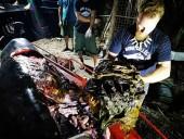 В желудке умершего кита нашли 40 кг пластика - фото 4