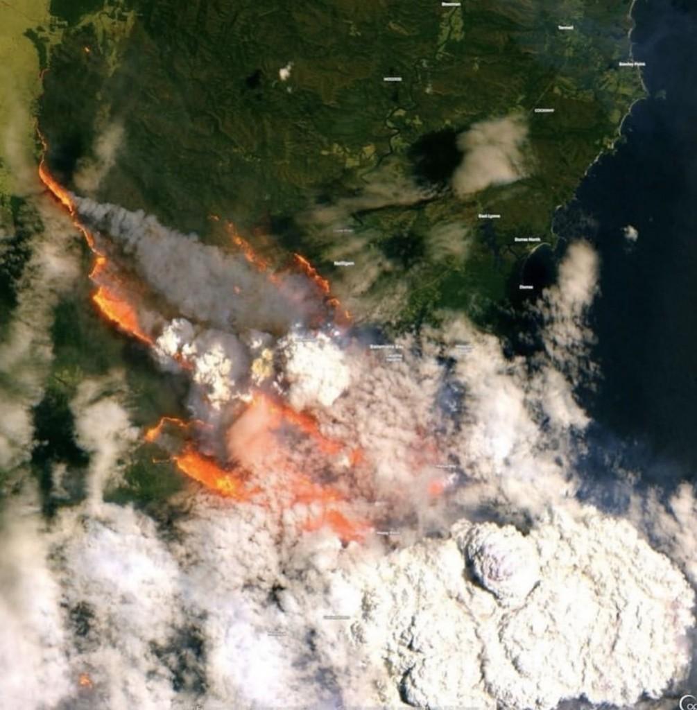 Пожежі в Австралії: загинули 24 людини і майже 500 тисяч тварин - фото 16