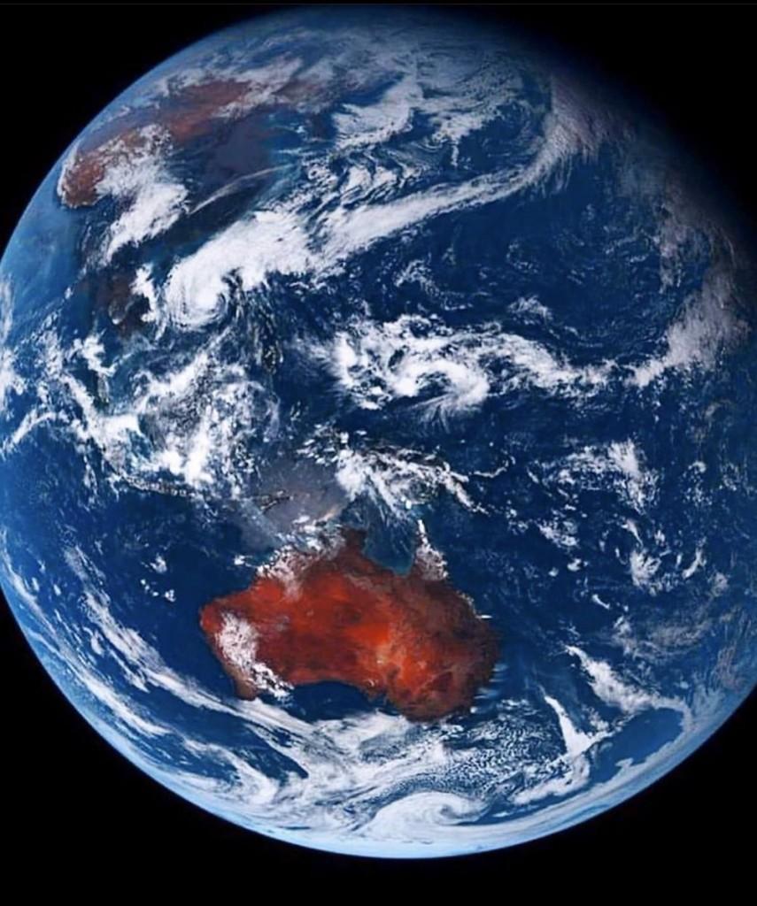Пожежі в Австралії: загинули 24 людини і майже 500 тисяч тварин - фото 15