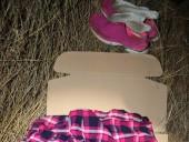 На автодороге в Одесской области нашли тело женщины - фото 2