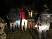 Четверо украинцев убегали от пограничников, имея с собой 7,5 тыс. пачек иностранных сигарет - фото 1