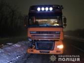 Шел посреди трассы: грузовик насмерть переехал парня - фото 2