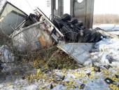 В Черниговской области грузовик упал с моста в Десну, водитель-иностранец погиб - фото 4