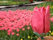 Над композицией работали более 15 дизайнеров: на Певческом открыли выставку с более 700 тысяч тюльпанов - фото 22