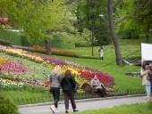 Над композицией работали более 15 дизайнеров: на Певческом открыли выставку с более 700 тысяч тюльпанов - фото 13