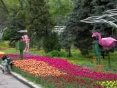 Над композицией работали более 15 дизайнеров: на Певческом открыли выставку с более 700 тысяч тюльпанов - фото 4