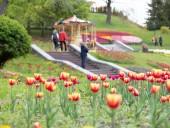 Над композицией работали более 15 дизайнеров: на Певческом открыли выставку с более 700 тысяч тюльпанов - фото 25