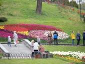 Над композицией работали более 15 дизайнеров: на Певческом открыли выставку с более 700 тысяч тюльпанов - фото 8