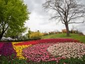 Над композицией работали более 15 дизайнеров: на Певческом открыли выставку с более 700 тысяч тюльпанов - фото 2