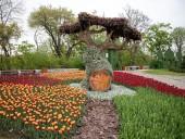 Над композицией работали более 15 дизайнеров: на Певческом открыли выставку с более 700 тысяч тюльпанов - фото 3