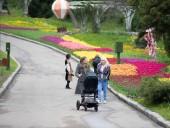 Над композицией работали более 15 дизайнеров: на Певческом открыли выставку с более 700 тысяч тюльпанов - фото 26
