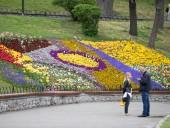 Над композицией работали более 15 дизайнеров: на Певческом открыли выставку с более 700 тысяч тюльпанов - фото 11