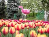 Над композицией работали более 15 дизайнеров: на Певческом открыли выставку с более 700 тысяч тюльпанов - фото 12