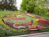 Над композицией работали более 15 дизайнеров: на Певческом открыли выставку с более 700 тысяч тюльпанов - фото 1