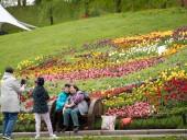 Над композицией работали более 15 дизайнеров: на Певческом открыли выставку с более 700 тысяч тюльпанов - фото 6
