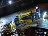 В шлюзе Темзы застрял детеныш кита: всю ночь его пытались освободить спасатели, после чего усыпили - фото 3