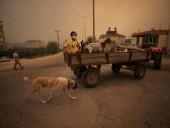 В Анталии вспыхнули масштабные лесные пожары. Людей эвакуируют - фото 3