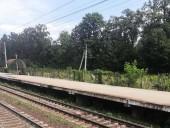 В Киевской области скоростной поезд сбил мужчину - фото 3