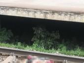 В Киевской области скоростной поезд сбил мужчину - фото 2