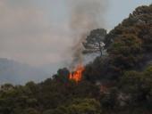 Лесные пожары в Испании: эвакуировали более 900 человек, есть погибший - фото 3