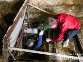 Конопля на 5 миллионов: на Закарпатье мужчина обустроил наркоплантации под землей - фото 1