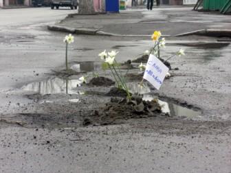 """В Житомире высадили цветы в дорожные ямы под """"Автодором"""""""