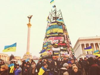 Головну ялинку країни почали встановлювати в центрі Києва - Цензор.НЕТ 3926