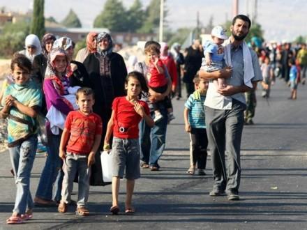 Рекордное количество переселенцев зафиксировали в Германии