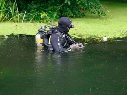 НаХарьковщине вместе савтомобилем утонули две женщины